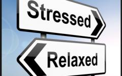 Finals Stress
