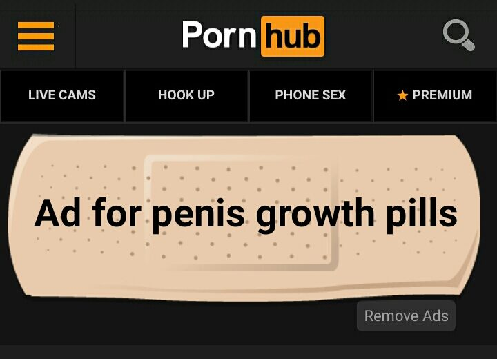 Pornhub%2C+YouPorn%2C+PaintBottle+and+many+other+websites+both+entertain+and+prey+on+people+looking+for+a+good+time