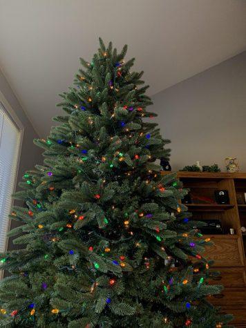 A Christmas Tree Commemorating the Holiday Season.