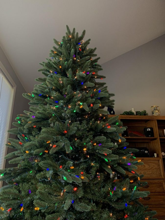 A+Christmas+Tree+Commemorating+the+Holiday+Season.