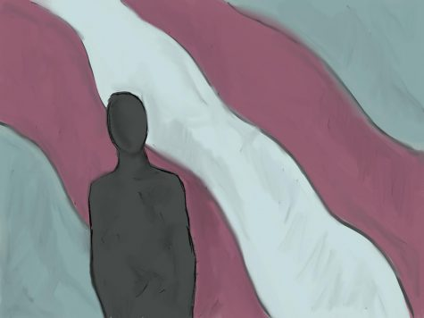 An illustration of a silhouette of a person standing in front of the transgender pride flag.